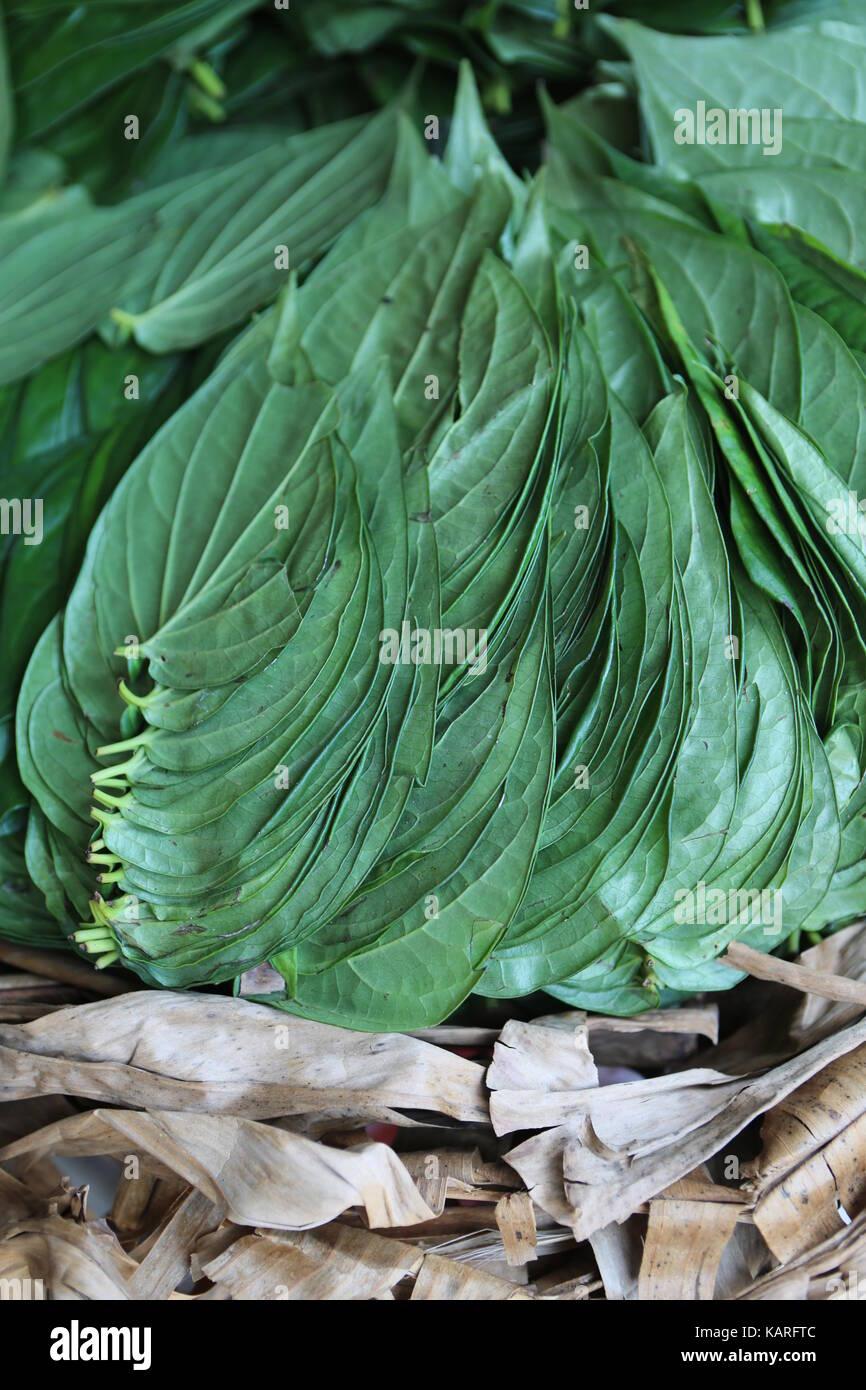 Colorful asian exotic vegetables on a market stall --- Buntes asiatisches exotisches Gemüse auf einem Marktstand - Stock Image