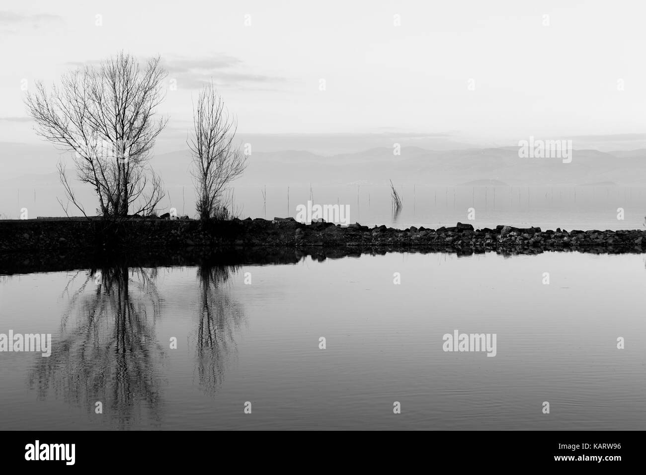 A symmetric photo of a lake, with trees and clouds reflections on water and soft tones - Stock Image