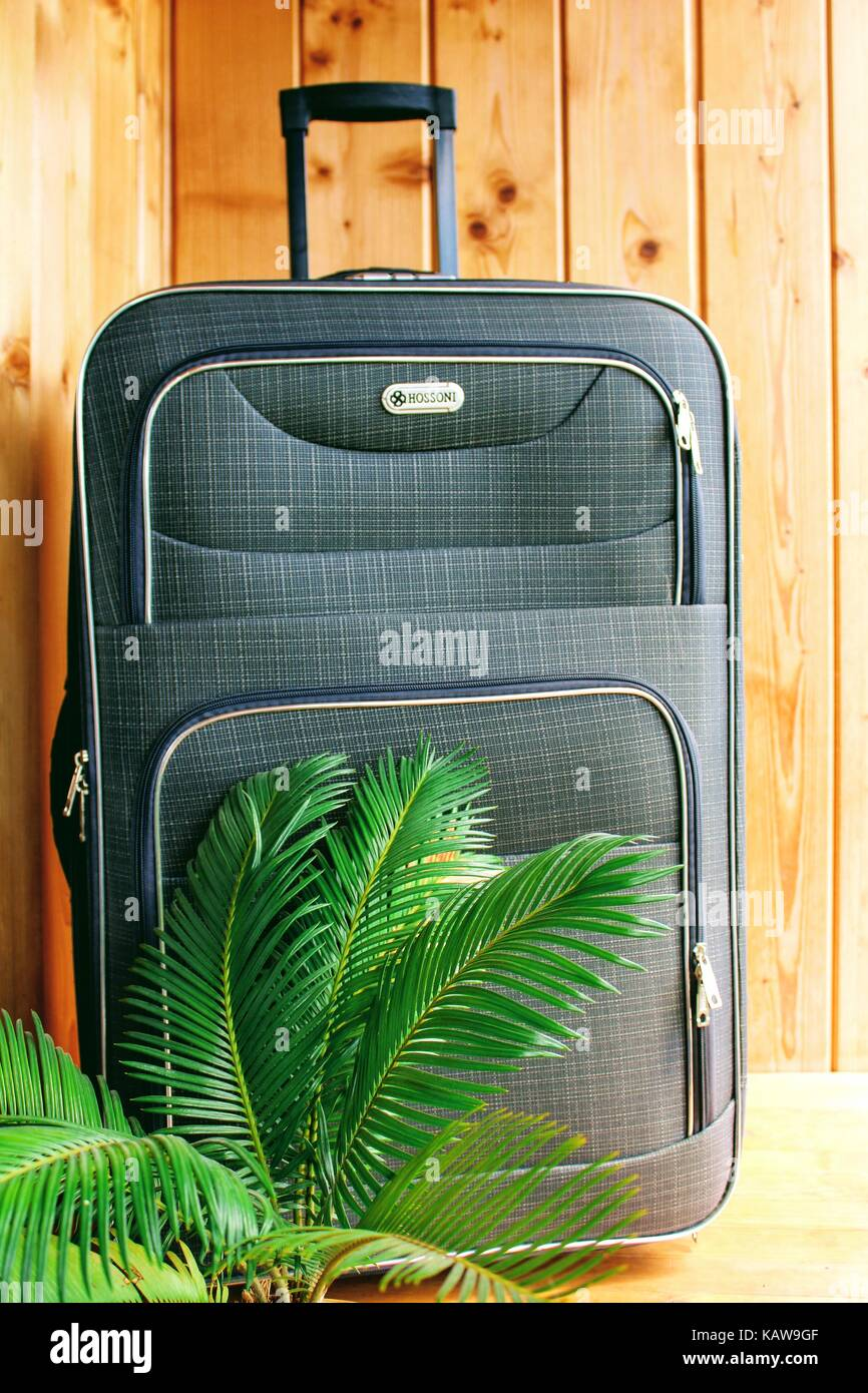 Suitcase on wheels for a fascinating journey to warm countries. - Stock Image