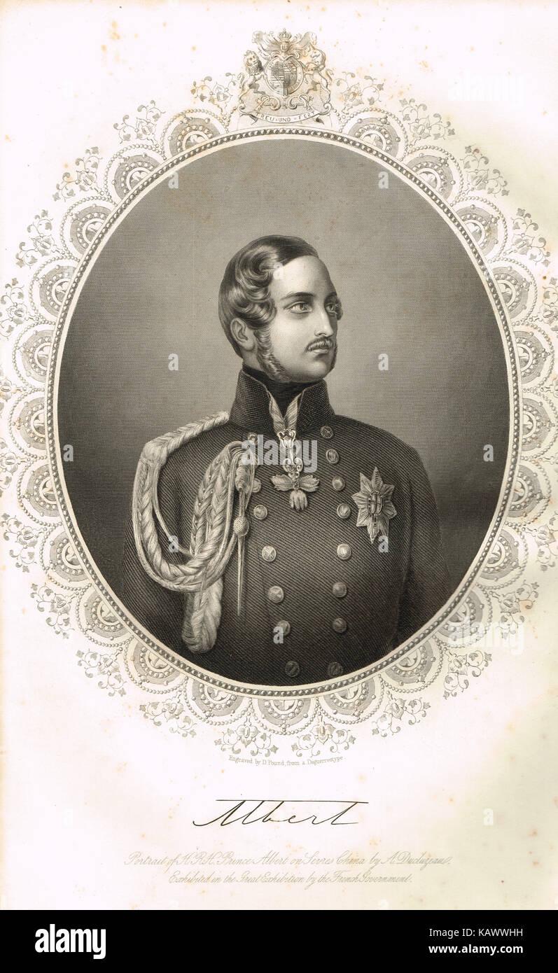 Albert, Prince consort of Queen Victoria - Stock Image