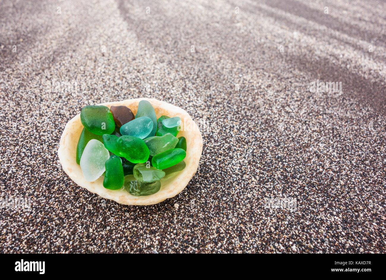 Glass from broken bottles washed on to beach inside shell on beach - Stock Image