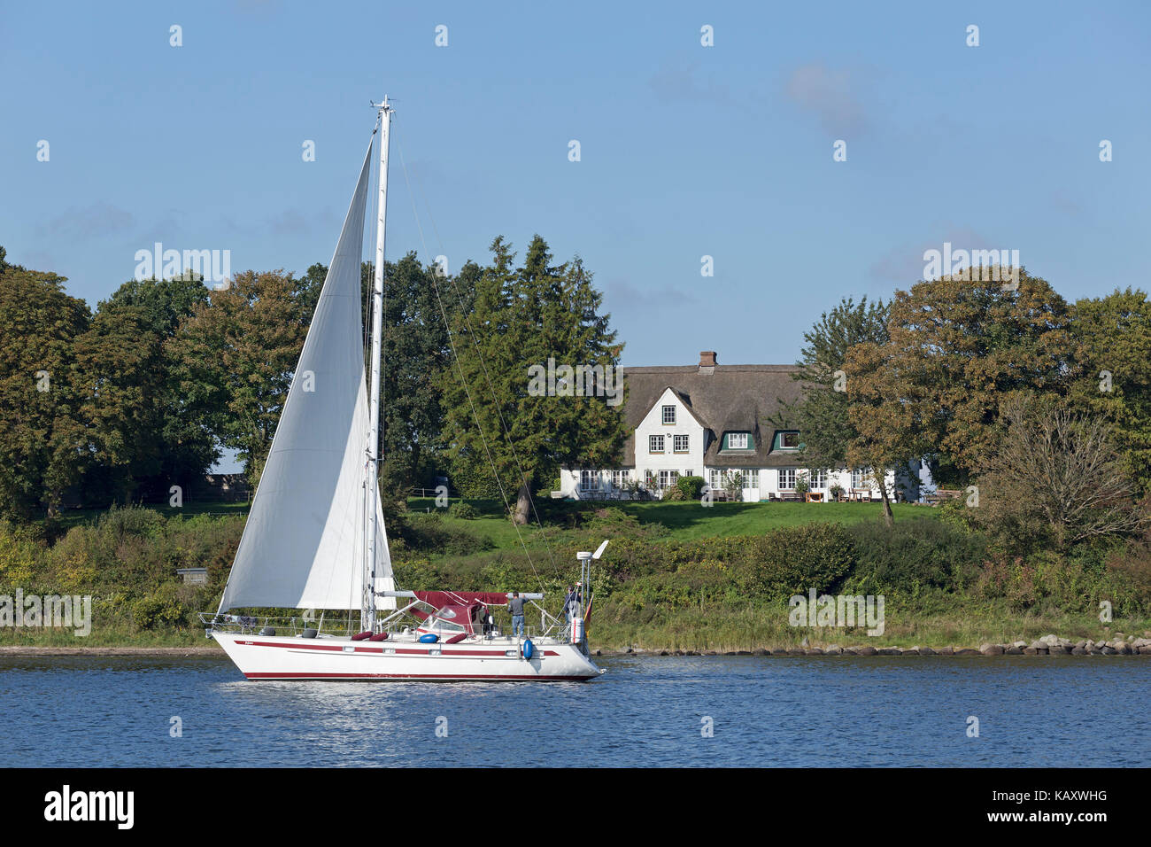 sailing boat, Rabelsund, Schlei, Schleswig-Holstein, Germany - Stock Image