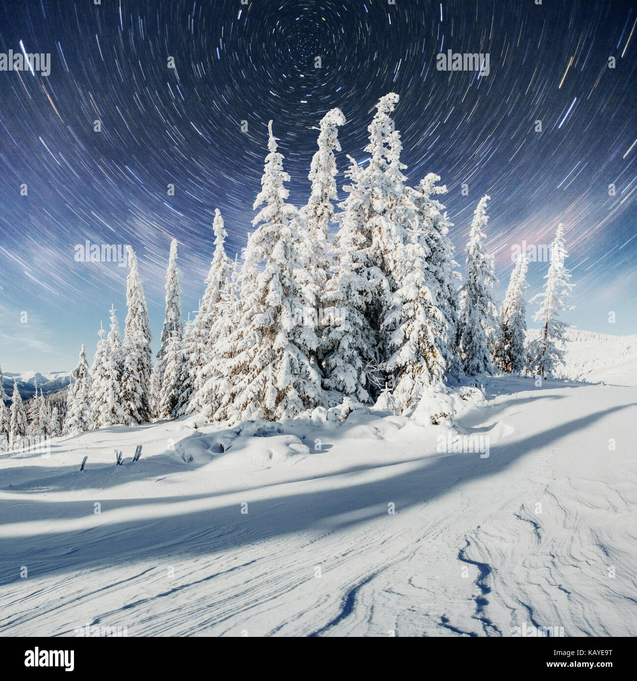 starry sky in winter snowy night. fantastic milky way in the New Year's Eve. In anticipation of the holiday. - Stock Image