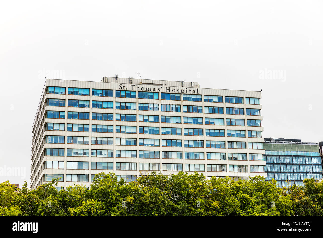 St Thomas' Hospital London, St. Thomas' Hospital, Westminster Bridge Road, London, SE1 7EH, United Kingdom, - Stock Image