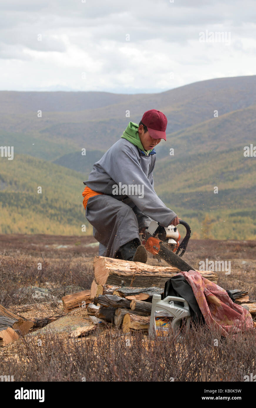 mongolian man cutting firewood in a falling snow - Stock Image