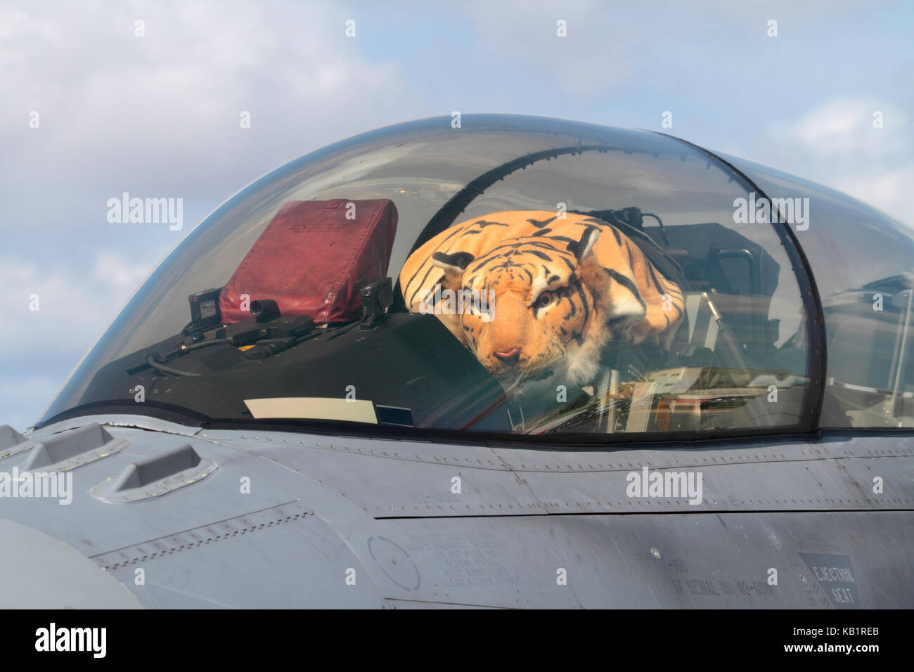 Polish Air Force F-16D jet fighter plane cockpit with tiger soft toy under closed canopy - Stock Image