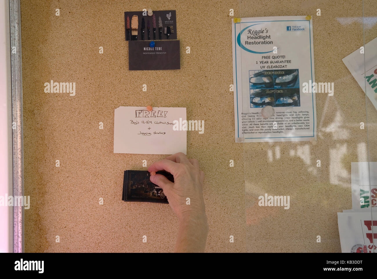 Caucasian woman posting business card on bulletin board at apartment complex, USA. - Stock Image