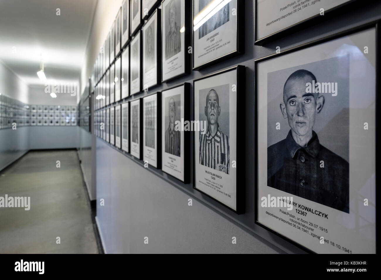 Portraits of prisoners at the Auschwitz WWII Nazi concentration camp museum, Poland - Stock Image