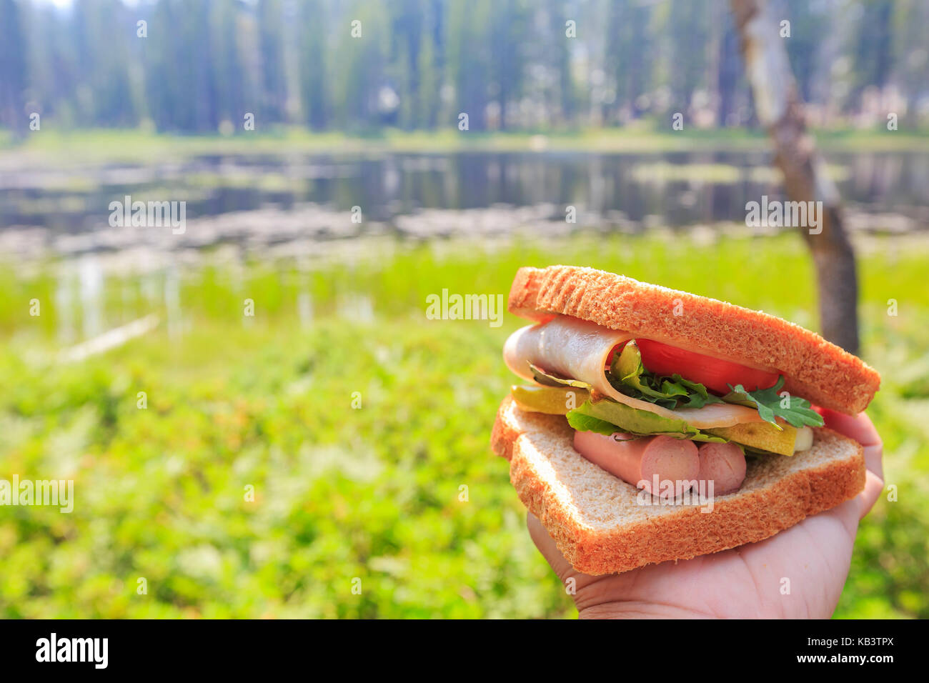 Close up shot of handmade sandwich, made with sausage, ham and vegtable - Stock Image