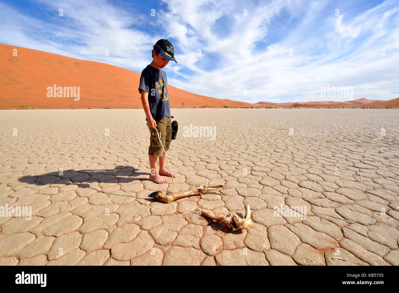 6be913512547 Namibia, Hardap, Namib desert, Namib-Naukluft national park, Sossusvlei  dunes,