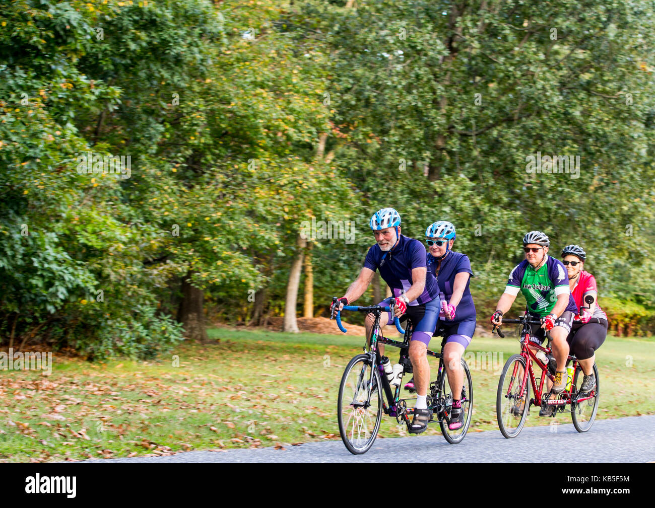 Tandem cyclists riding their bicycles - Stock Image
