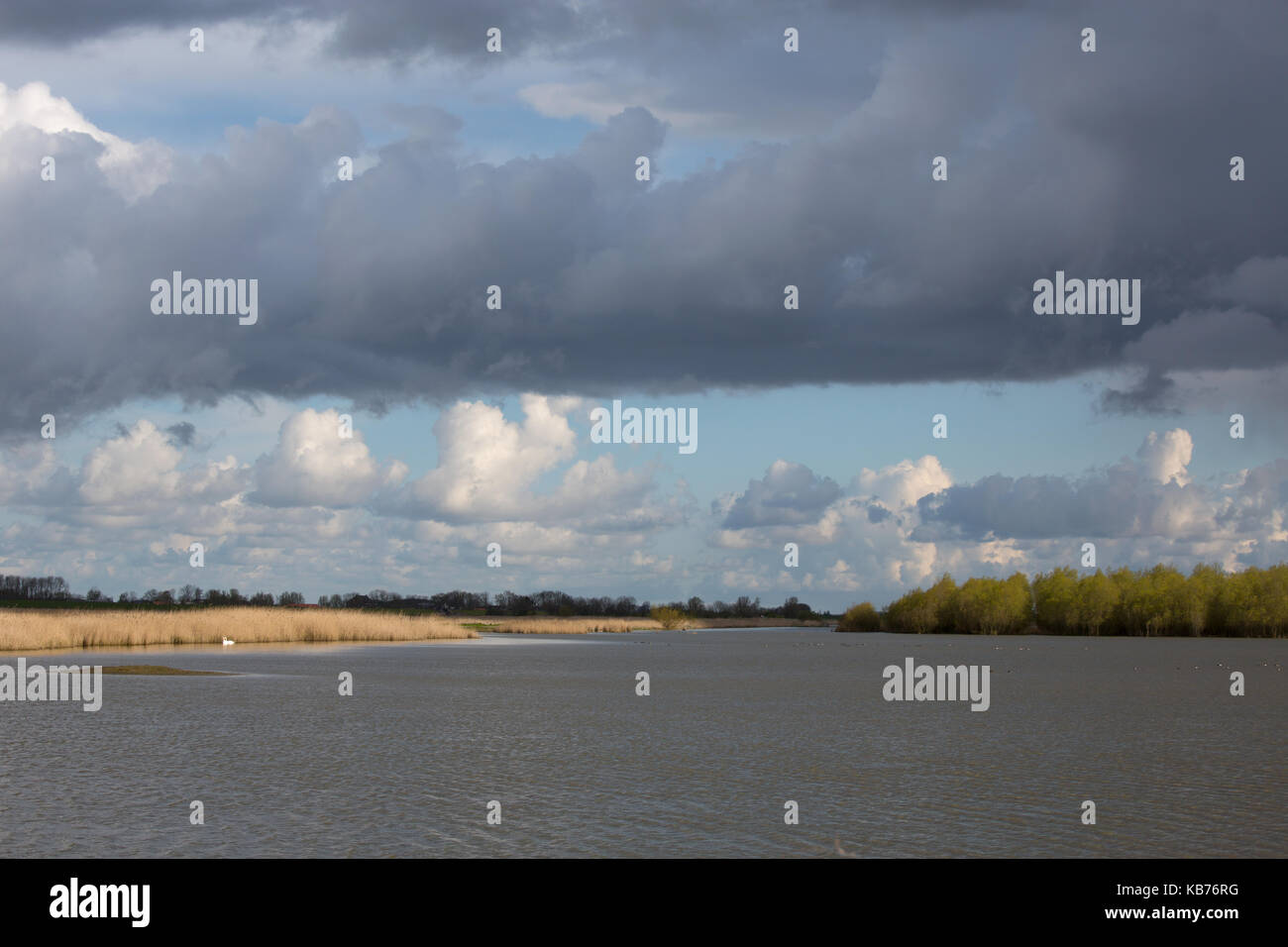 Ezumakeeg with clouds in the sky, The Netherlands, Friesland, Lauwersmeer, Ezumakeeg - Stock Image