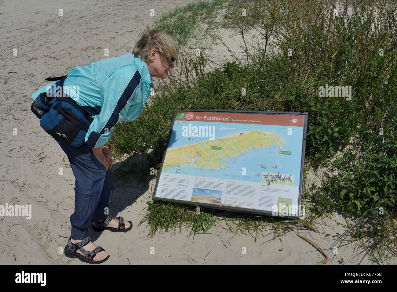 Woman next to Information panel from Staatsbosbeheer indicating the access to the Boschplaat, The Netherlands, Friesland, - Stock Image