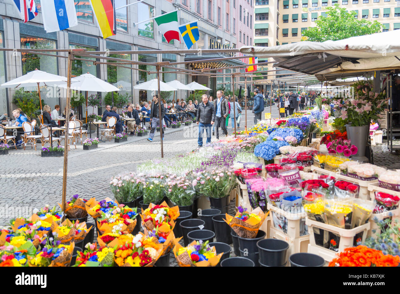 Flower stall and cafe in Hotorget, Stockholm, Sweden, Scandinavia, Europe - Stock Image