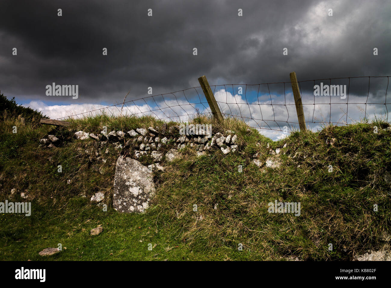 stone wall and fencing with dark clouds on Bodmin moor Cornwall UK - Stock Image
