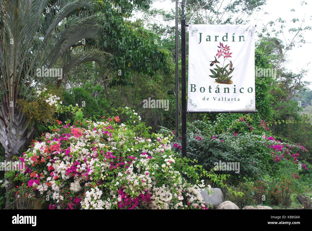 Botanical Gardens Of Puerto Vallarta, Jardin Botanico De Vallarta, Puerto  Vallarta, Mexico
