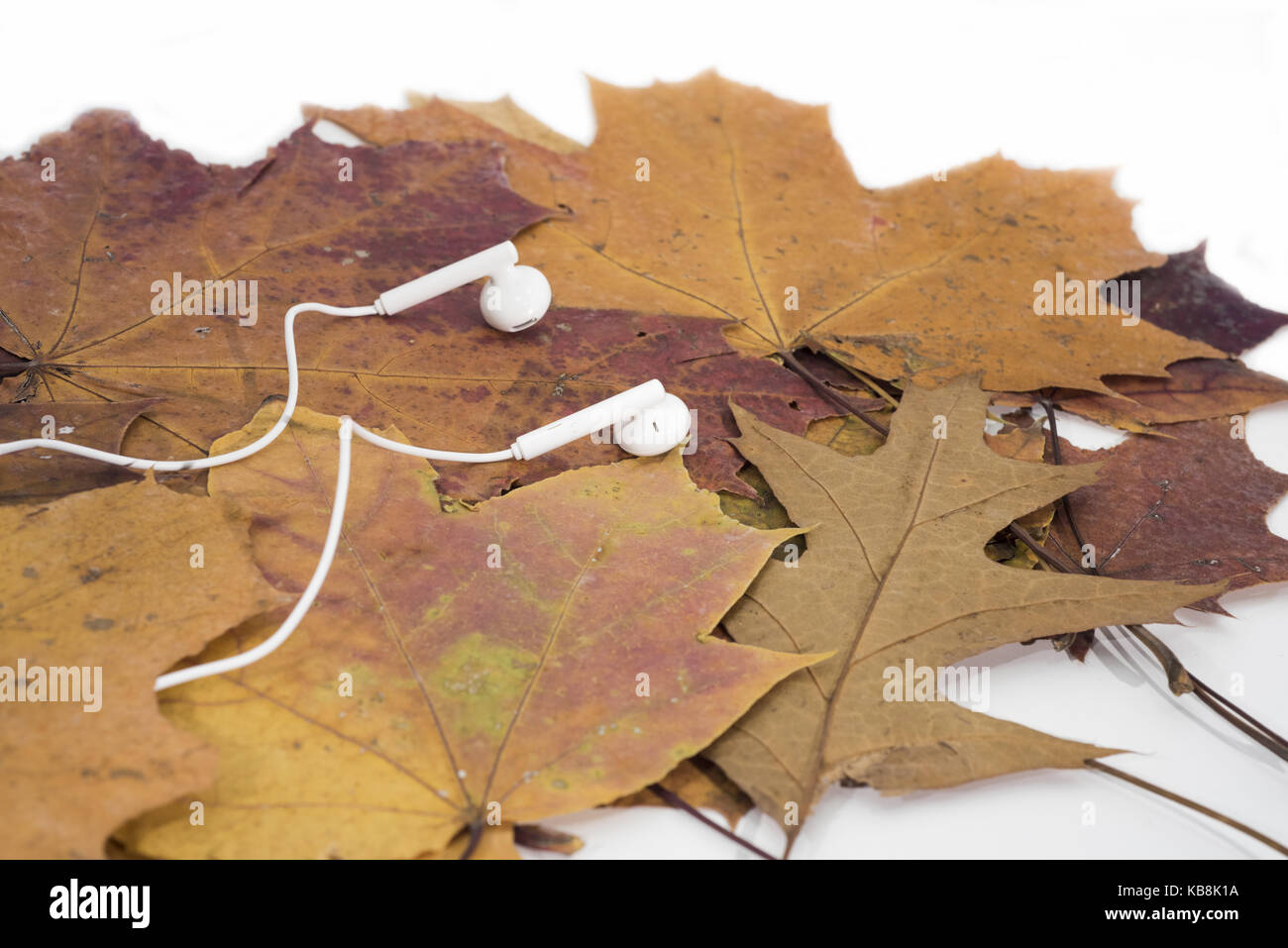 Music autumn abstraction. Autumn texture with white headphones Stock Photo