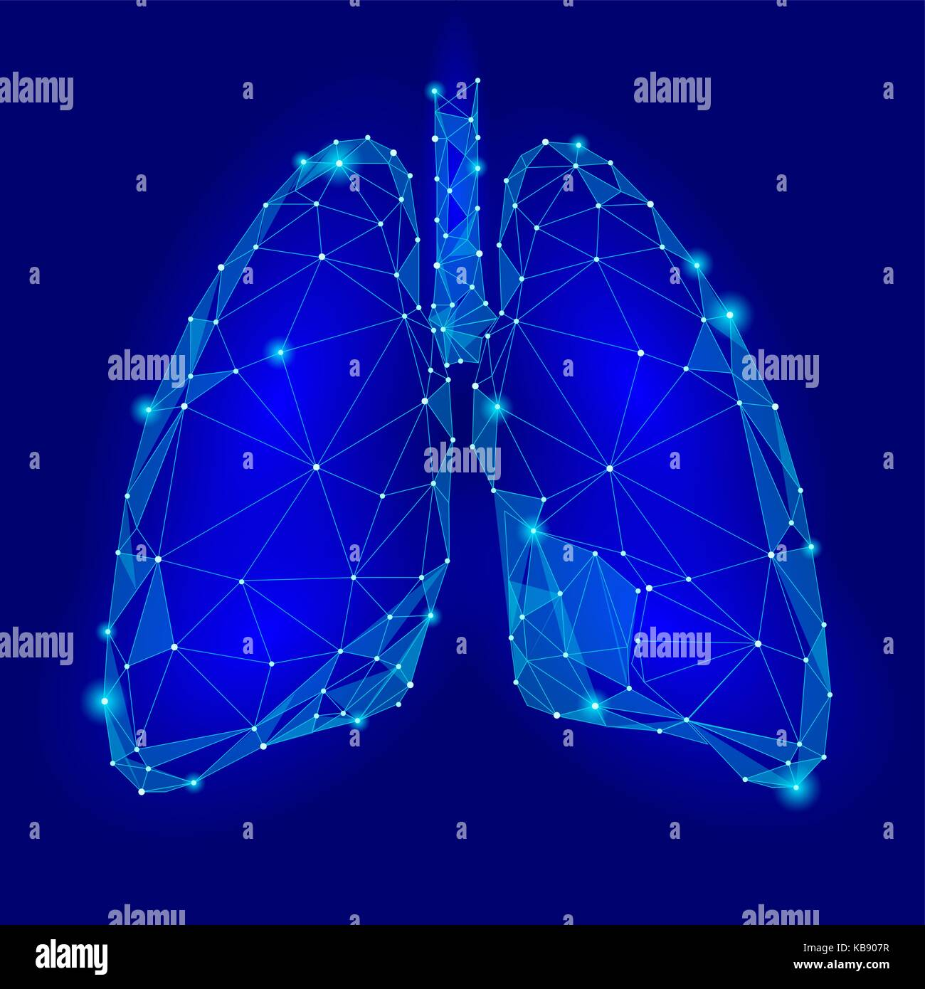 Human Internal Organ Lungs. Low Poly technology design. Blue color polygonal triangle connected dots. Health medicine - Stock Image