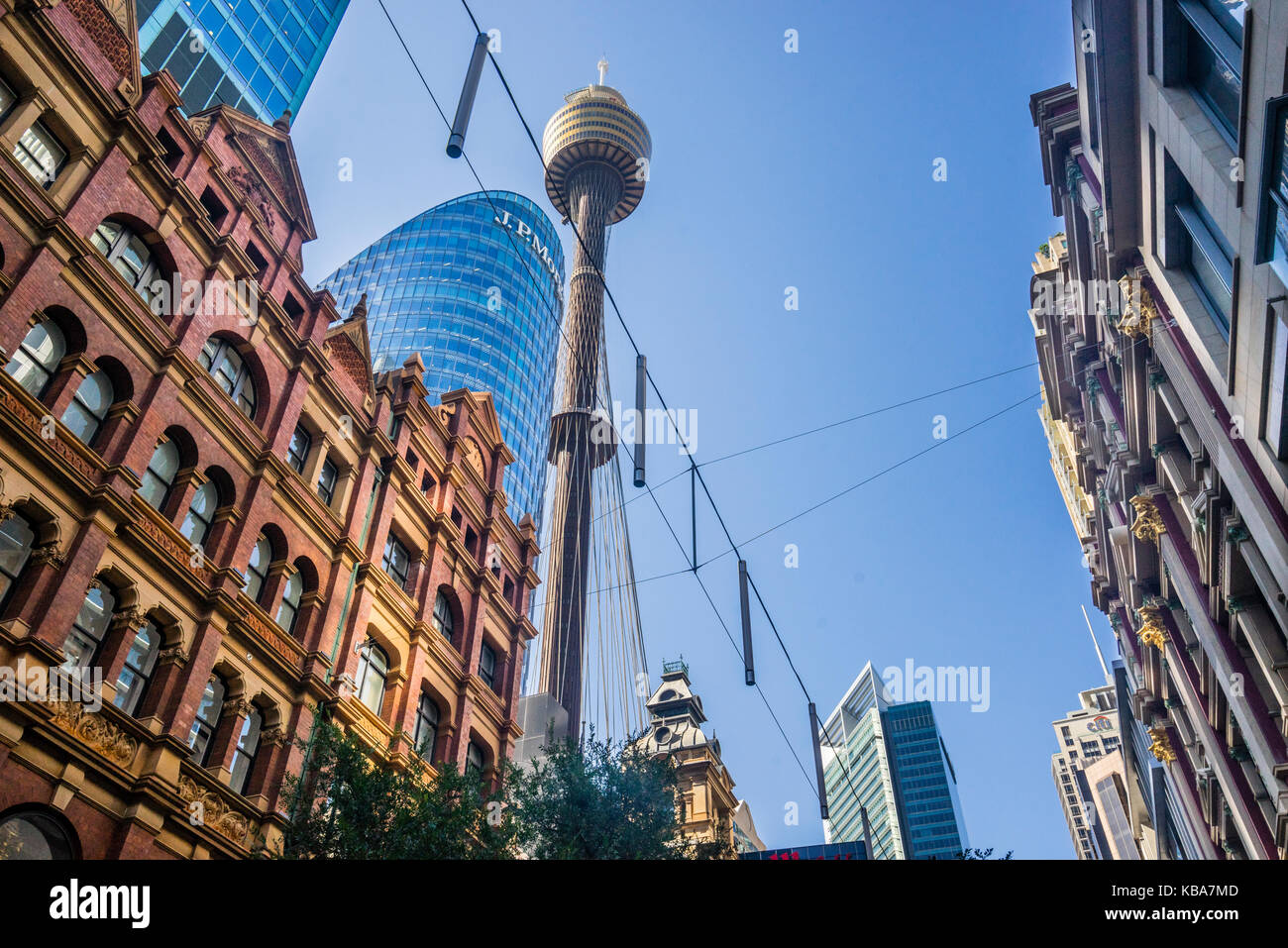 Australia, New South Wales, Sydney, view of Sydney Tower from Pitt Street, with 309 metres Sydney's tallest - Stock Image