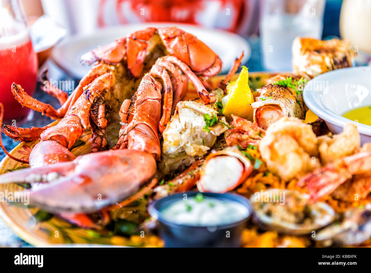 Macro closeup of red lobsters, shrimp, crab, oyster and seafood platter on plate in restaurant with tartar sauce - Stock Image