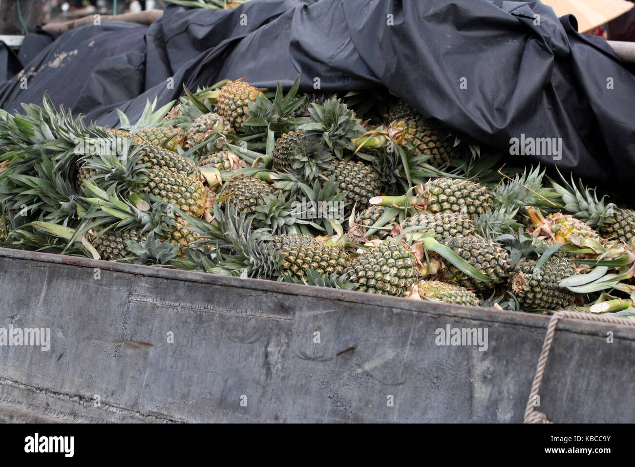Pineapples on boat at mekong delta - Stock Image