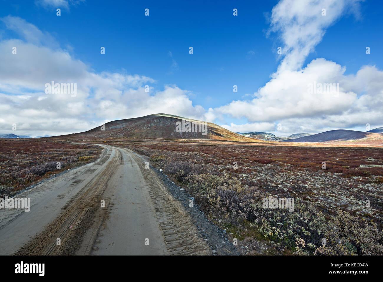 Norvegia, parco di Dovrefjell, paesaggio, landscape - Stock Image
