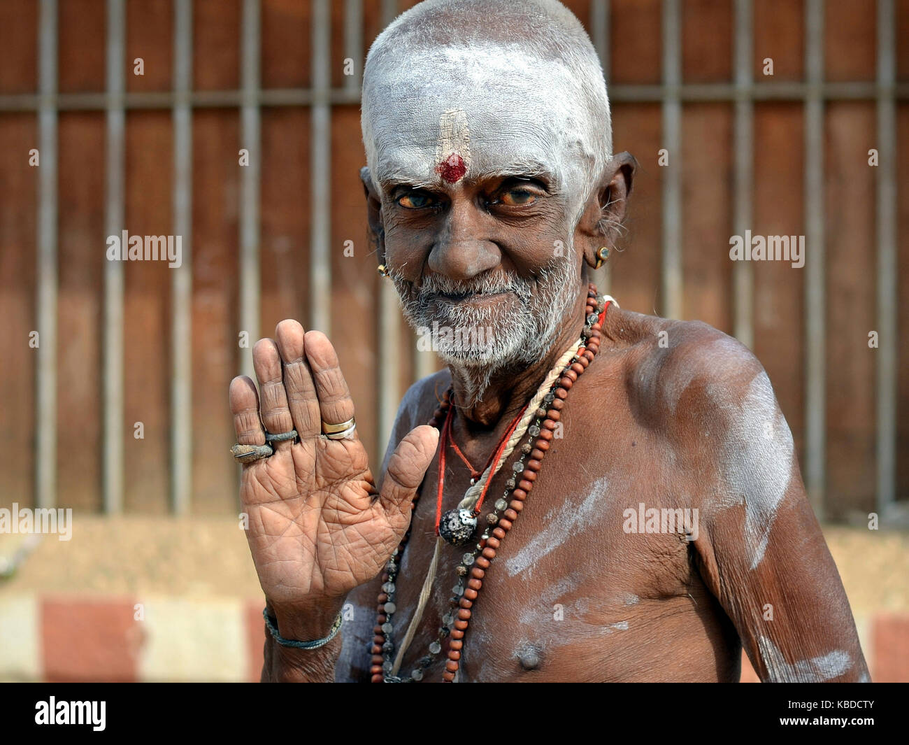 Barechested, very old Shaivite Brahmin with white vibhuti and red tilaka mark on his forehead, raising his right - Stock Image