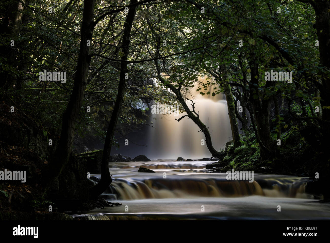 A Mystical Summerhill Force and Bowlee Beck, Bowlees, Upper, Teesdale, County Durham, UK - Stock Image