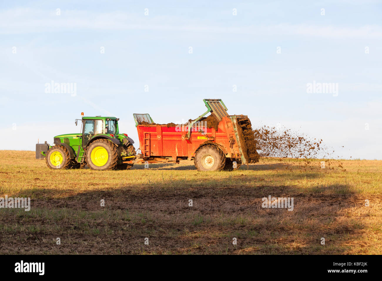 Farmer spreading  natural manure from his livestock  for organic fertilisation using a muck spreader on an overwintered - Stock Image