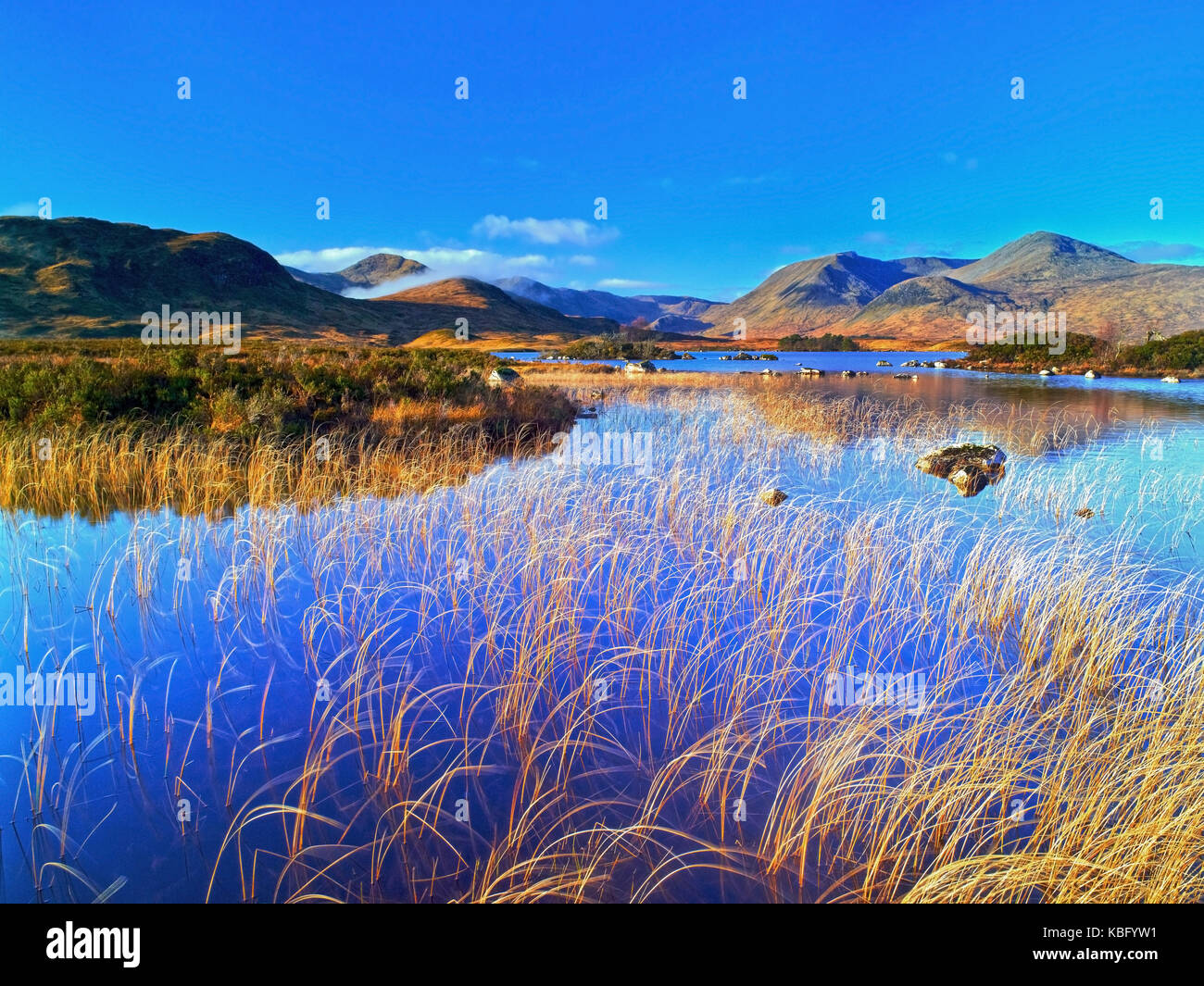 A sunny winter view of Loch na h-Achlaise on Rannoch Moor, near Glen Coe in the Scottish Highlands - Stock Image