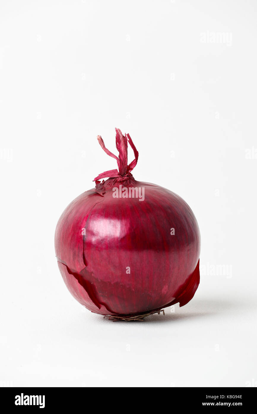 Red onion cut out on white background - Stock Image