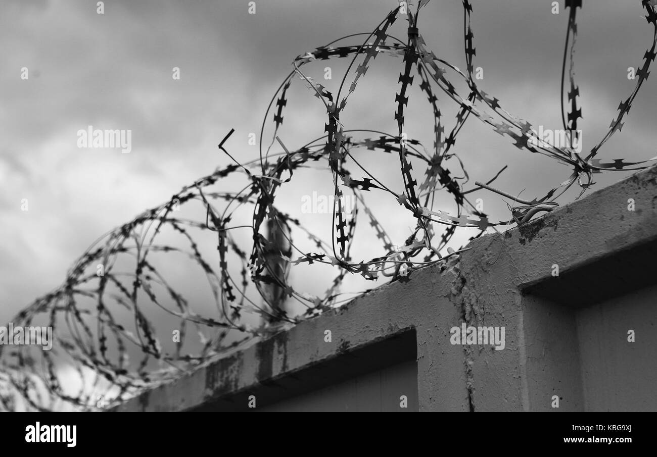 Concrete Wall Barbed Wire Stock Photos & Concrete Wall Barbed Wire ...
