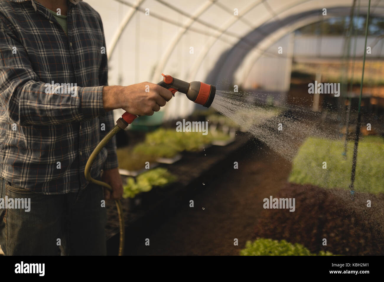 Mid-section of farmer watering plants in greenhouse Stock Photo