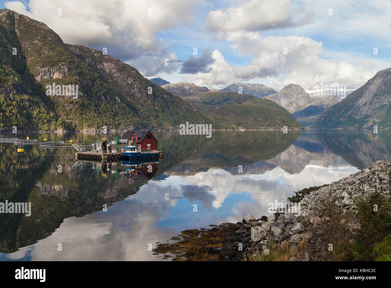 Mauranger Fjord, branch of the Hardanger Fjord, Kvinnherad, Hordaland, Norway. - Stock Image