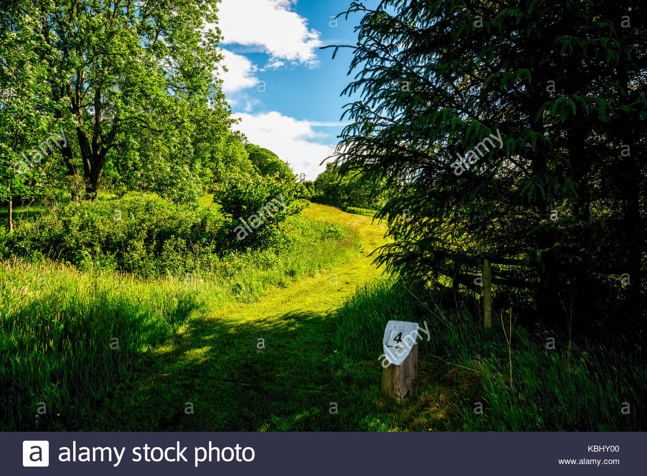 Hole number four tee off point at Loch Tay flying disc golf course, central Scotland - Stock Image