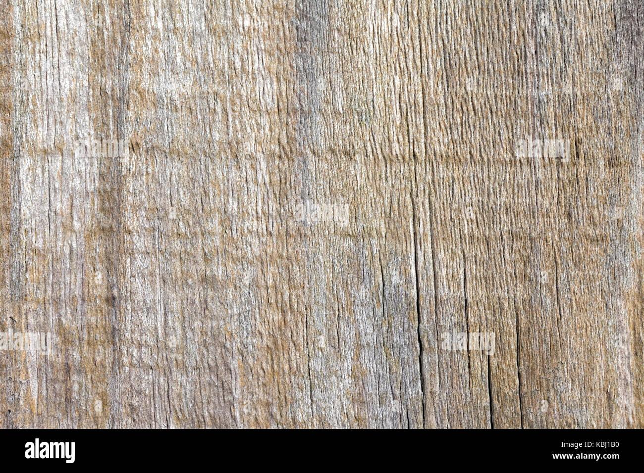 Textura de madera. - Stock Image