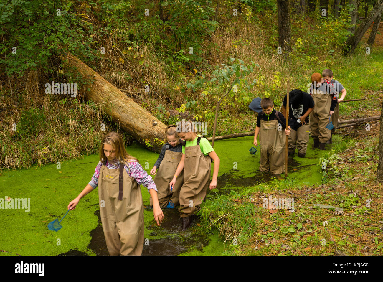 Kids walk in the water with their teacher as they learn about aquatic biology and other environmental education - Stock Image
