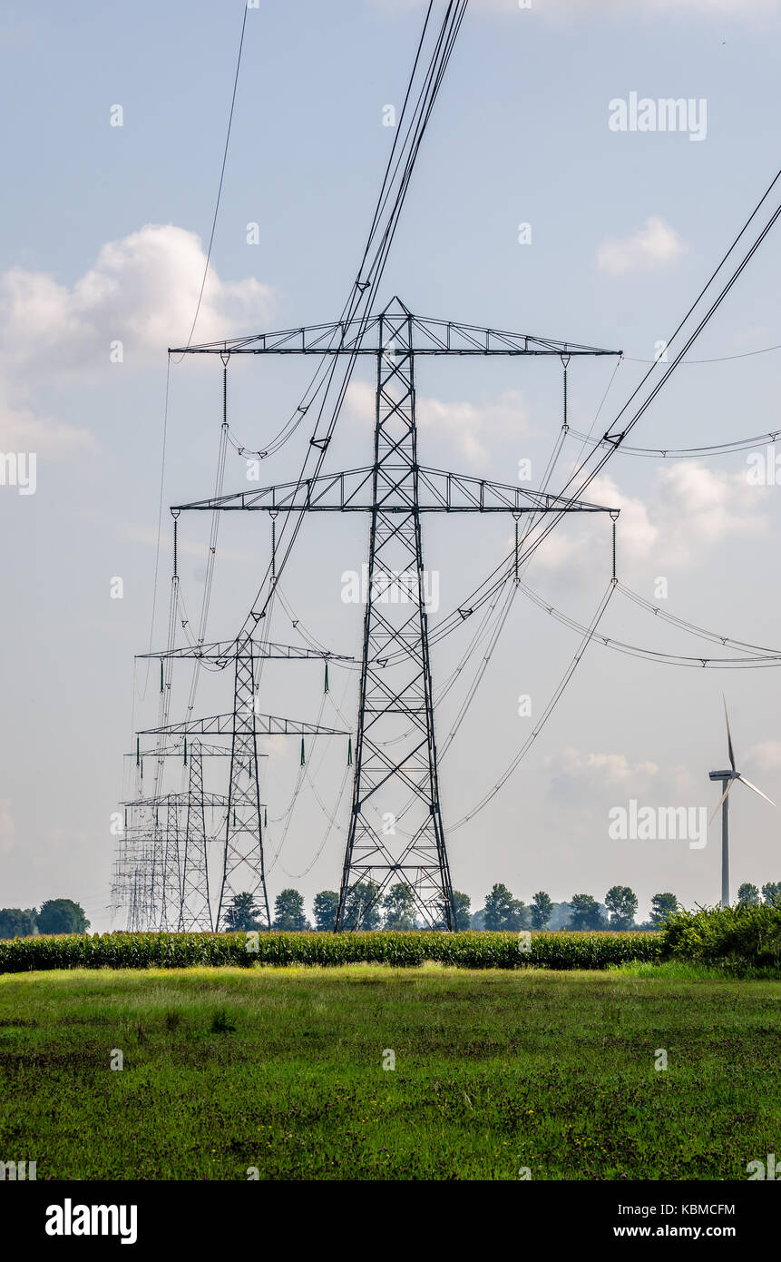 Electricity cable over the farm lands - Stock Image