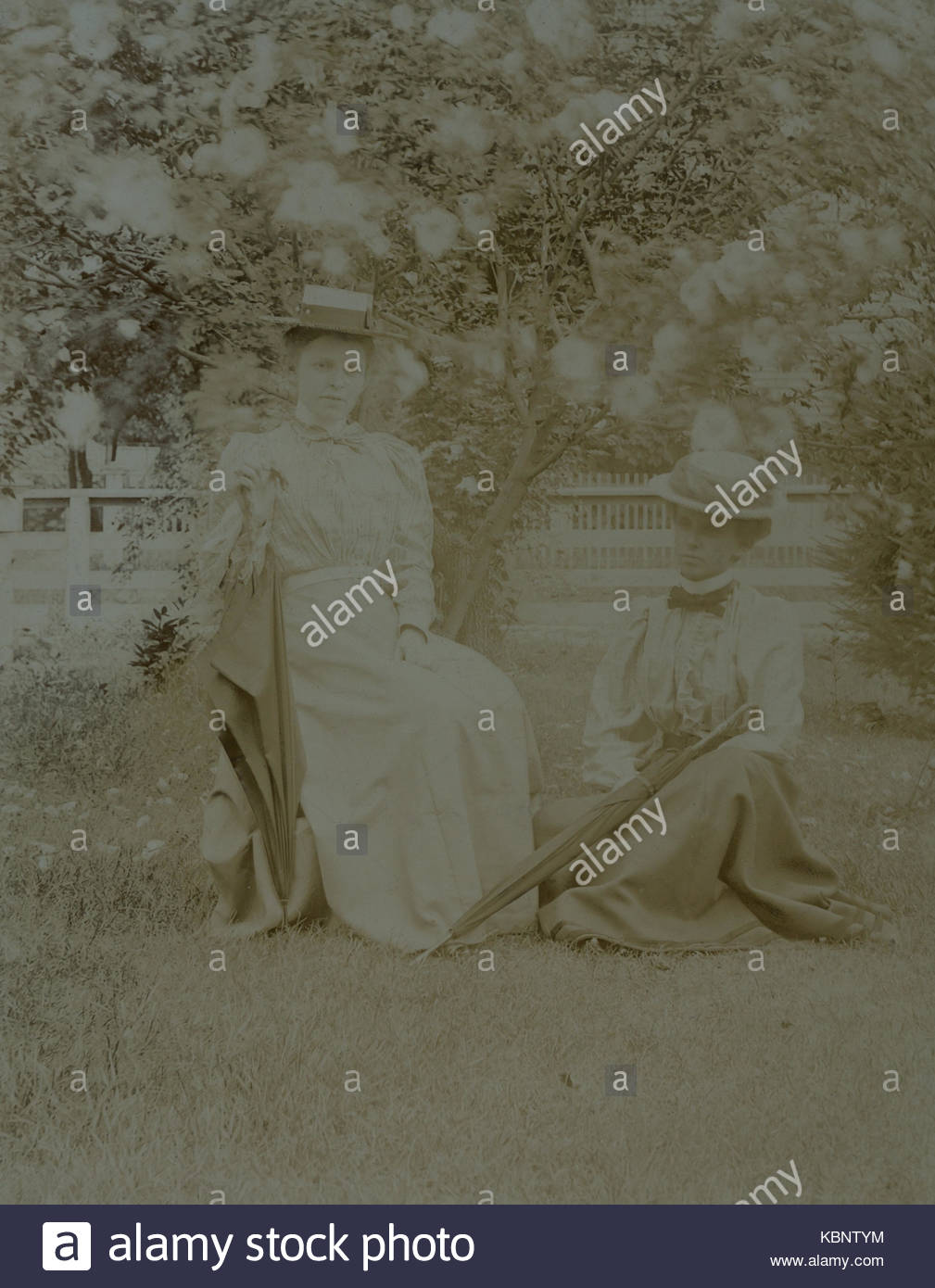 American archive monochrome photo of two young ladies in a garden in front of a blossom tree. One woman is sitting - Stock Image