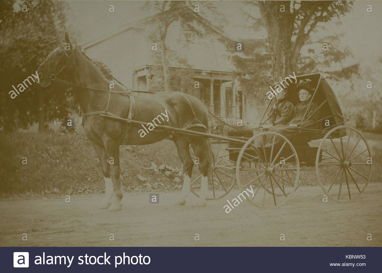 American archive monochrome photo of two ladies wearing hats sitting in a horse carriage on a dirt lane outside - Stock Image