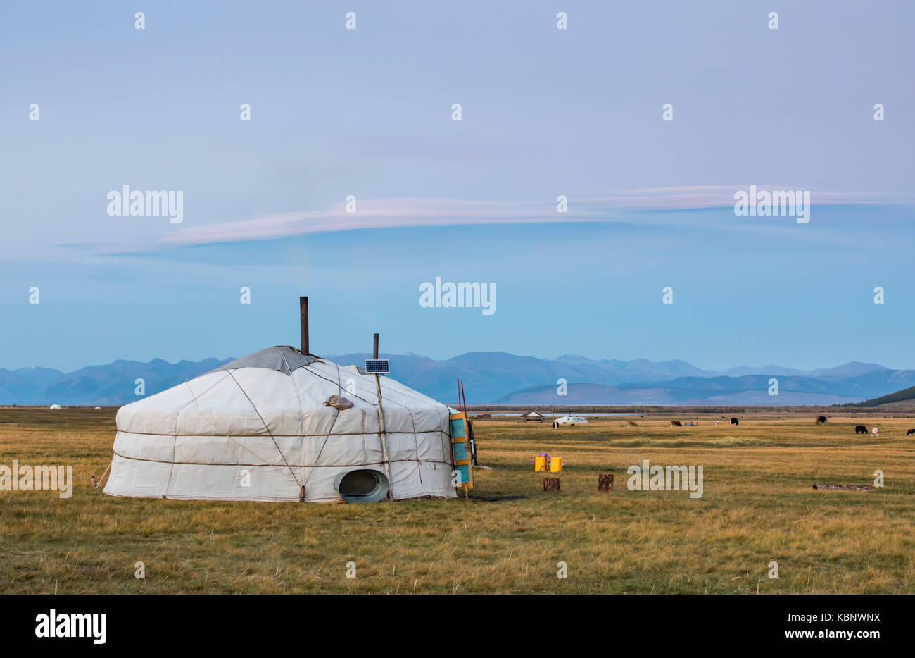mongolian family gers in a landscape of northern Mongolia - Stock Image