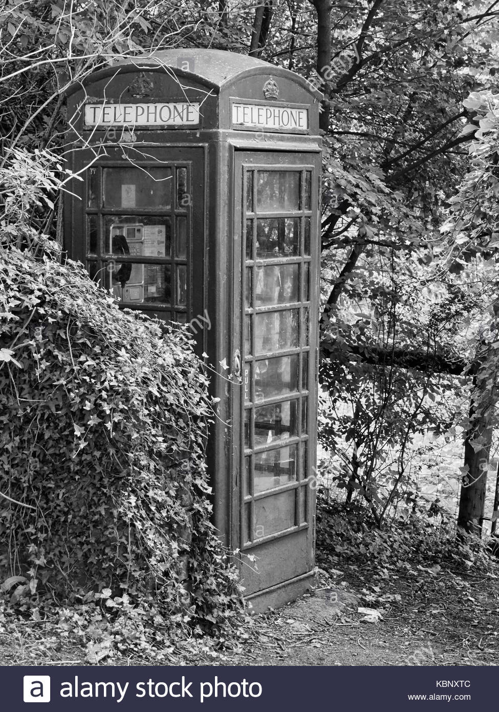 a red traditional british uk telephone box in the countryside uk - Stock Image