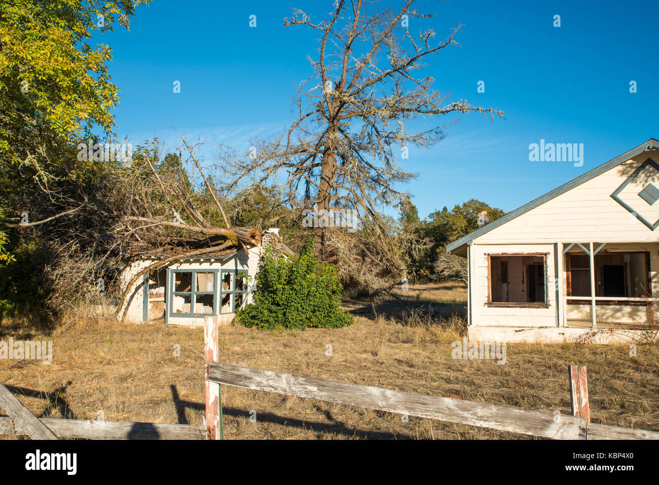 House Without Windows Tree Without Leaves-Two old houses near the Grave Creek Covered Bridge sit forlornly, windows - Stock Image