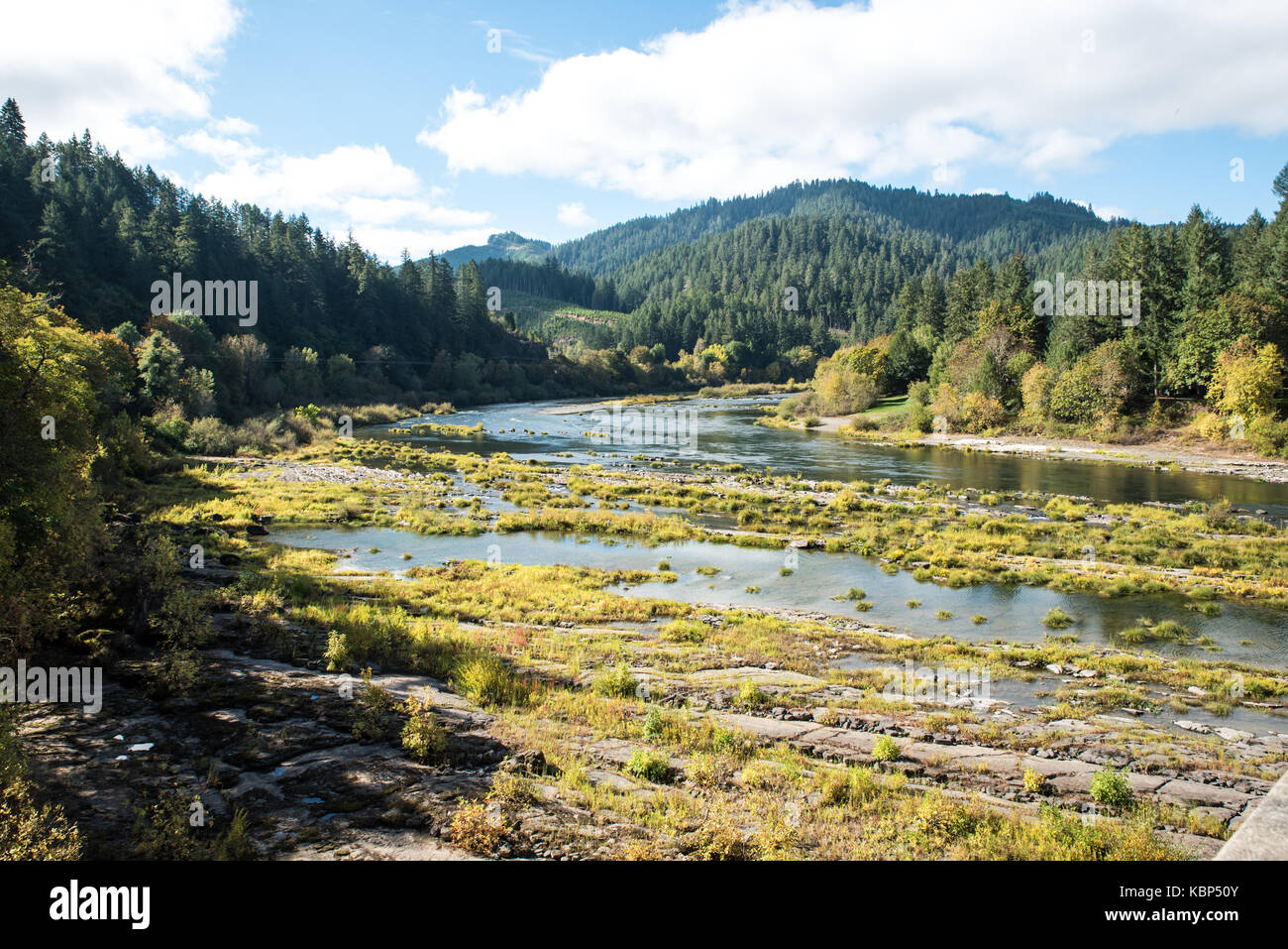 Placid Umpqua River In October-In early October, on a quiet, mostly sunny day, the Umpqua River flows dreamily through - Stock Image