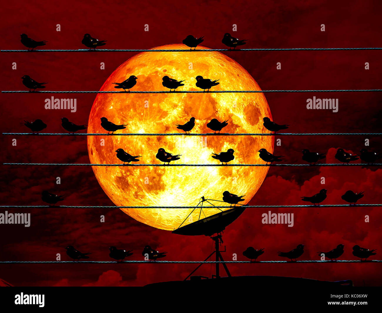 Blood moon full moon and satellite and birds on power electric line, Elements of this image furnished by NASA - Stock Image