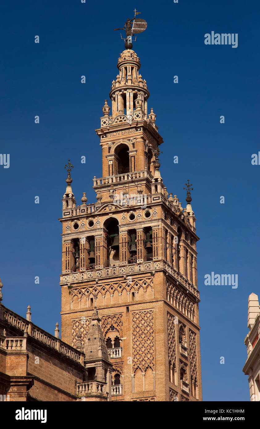 Giralda tower, Cathedral, Seville, Region of Andalusia, Spain, Europe - Stock Image