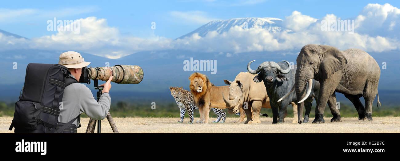 Professional wildlife photographer on safari. Big african five - Stock Image