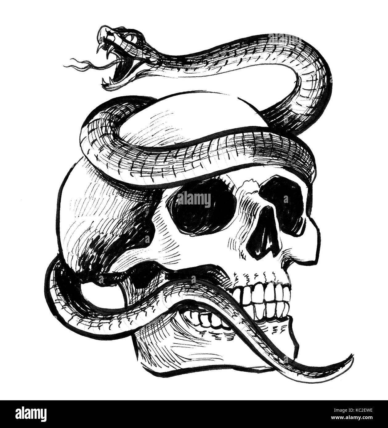 Skull And Snake Stock Photo 162324778