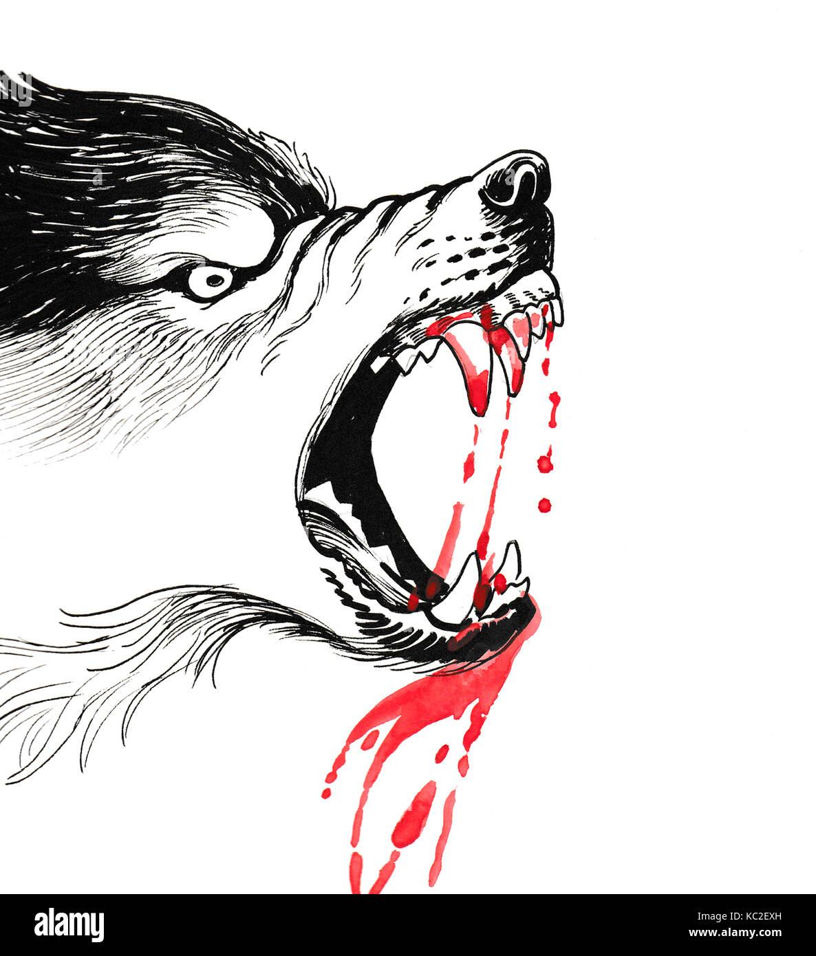 Bloody Wolf Stock Photo Alamy