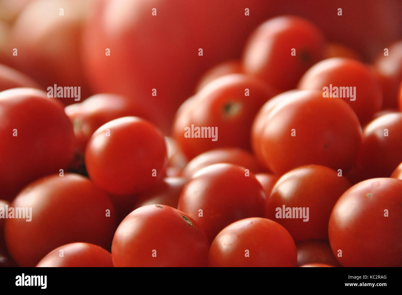 Picking tomatoes. Tomato and raspberry cocktail. Vegetables. Stock Photo